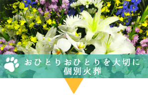 神戸どうぶつセレモニーは個別火葬
