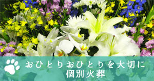 神戸市ペット個別火葬、動物霊園