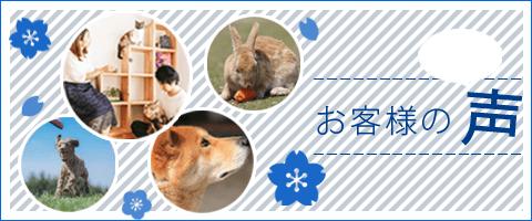 神戸市のペット火葬、動物霊園のお客様の声
